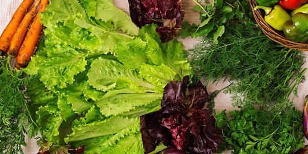 Culturile de toamna- ce legume poti planta?